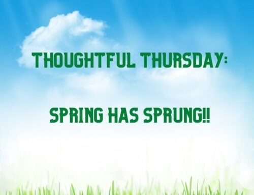 Thoughtful Thursday: Spring Has Sprung